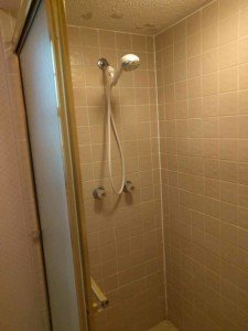 Master Suite shower before
