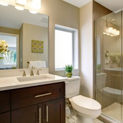 convert tub to walk in shower tallahassee fl
